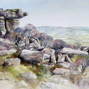 brimham rocks (L)