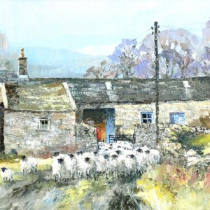 Fellside flock