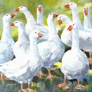 Gwens Geese