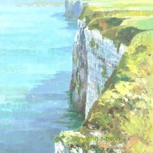 Bempton Cliffs - acrylic on board - 14in x 10in - £400